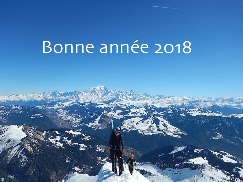 Bonne année 2018 !!!!! Les 100 plus belles photos de l'année 2017