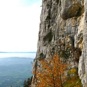 cours-escalade-falaise-annecy