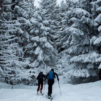 Ski de randonnée demi journée